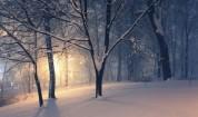 Студ през декември, чакаме сняг за Коледа
