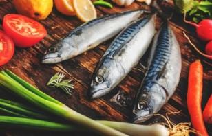Потвърдено: Черноморската риба е без химикали и е богата на омега-3 киселини