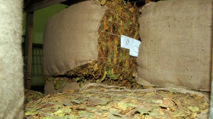 Местан: Няма да остане неизкупен тютюн