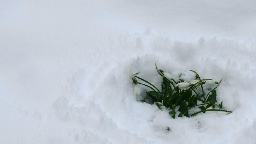Двама починаха в студовете, страната в снежен капан