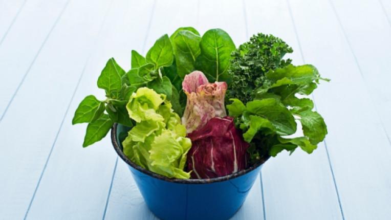 салата зелена цвекло спанак здравословно