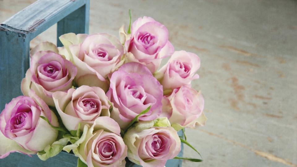 Тайният език на цветята -  кое цвете какво означава