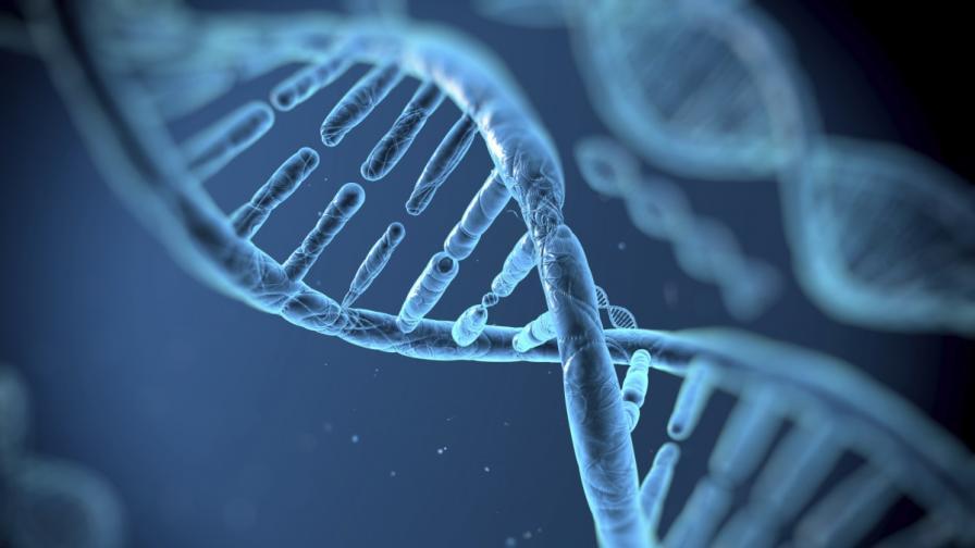 Учени съживиха изчезнал вирус чрез ДНК по пощата
