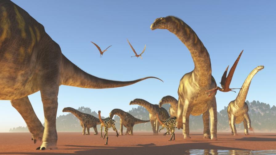 Изчислиха теглото на 426 вида динозаври