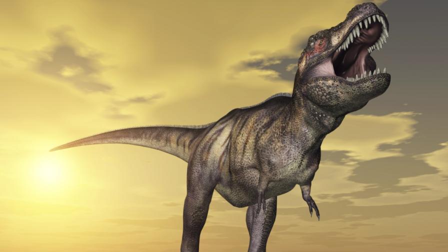Тиранозавър Рекс, наследник на горгозавъра