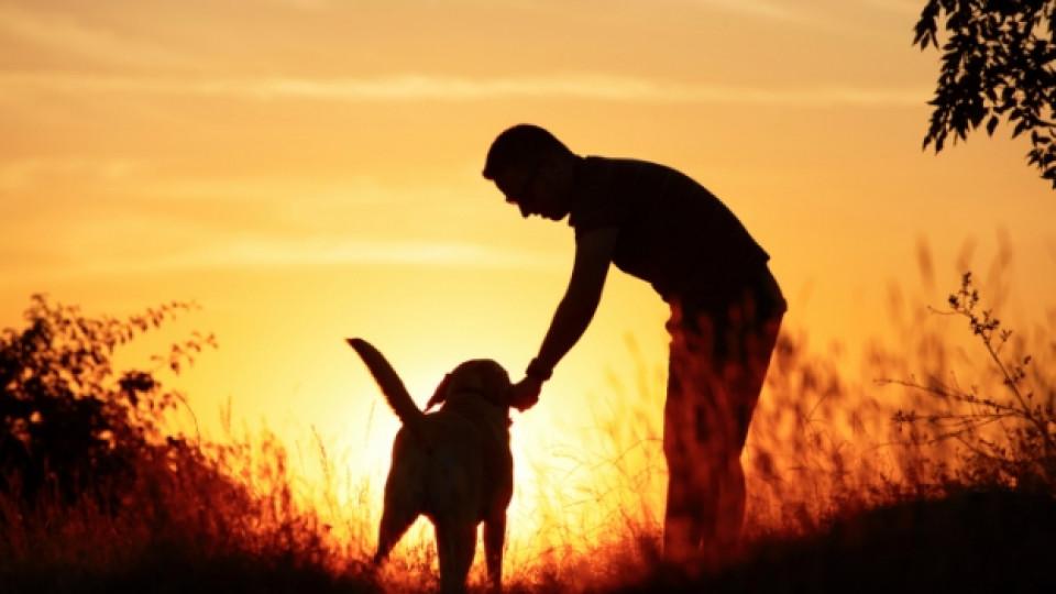 Мъжът с кучето