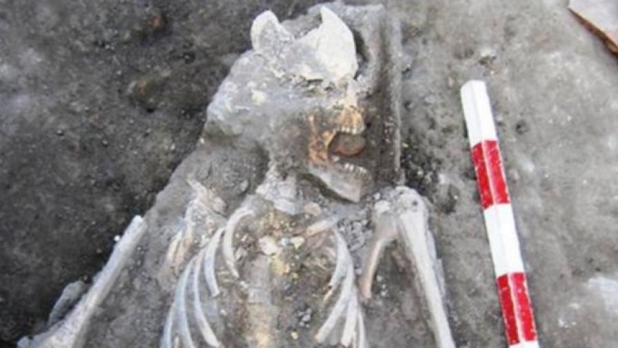 Археолози откриха вампир и в Пловдив