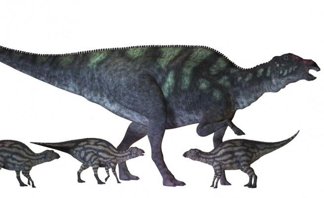 Динозаврите са разчитали на детегледачки