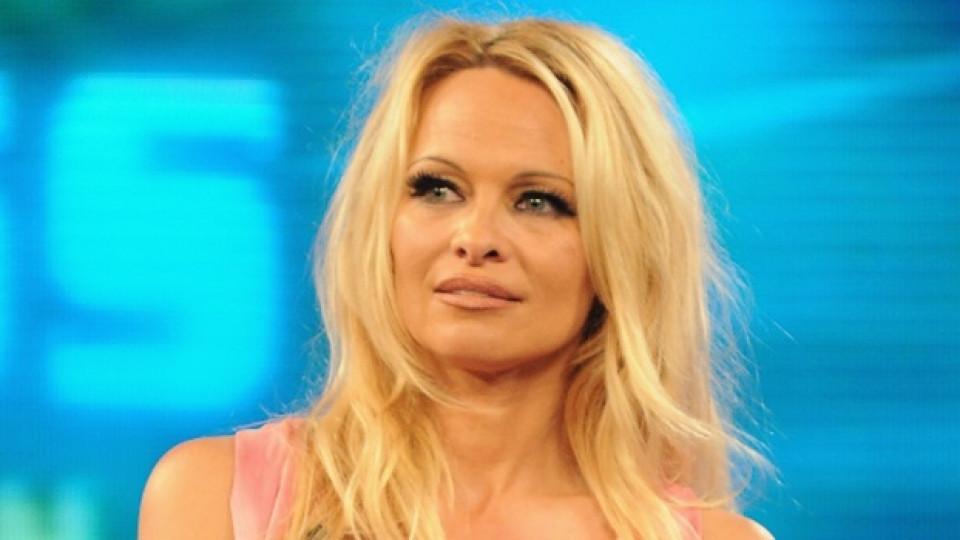 Памела е била на корицата на списание Playboy цели 13 пъти