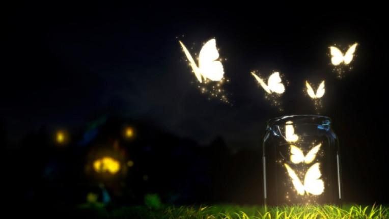 магия вълшебство буркан пеперуда светлина