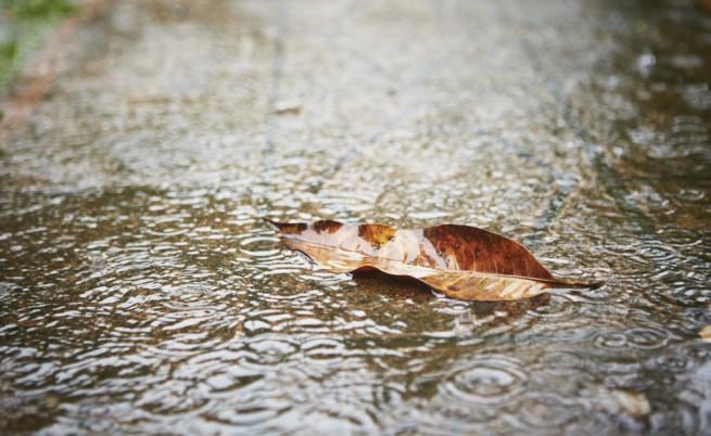 Усложнена обстановка в Югоизточна България заради дъждовете