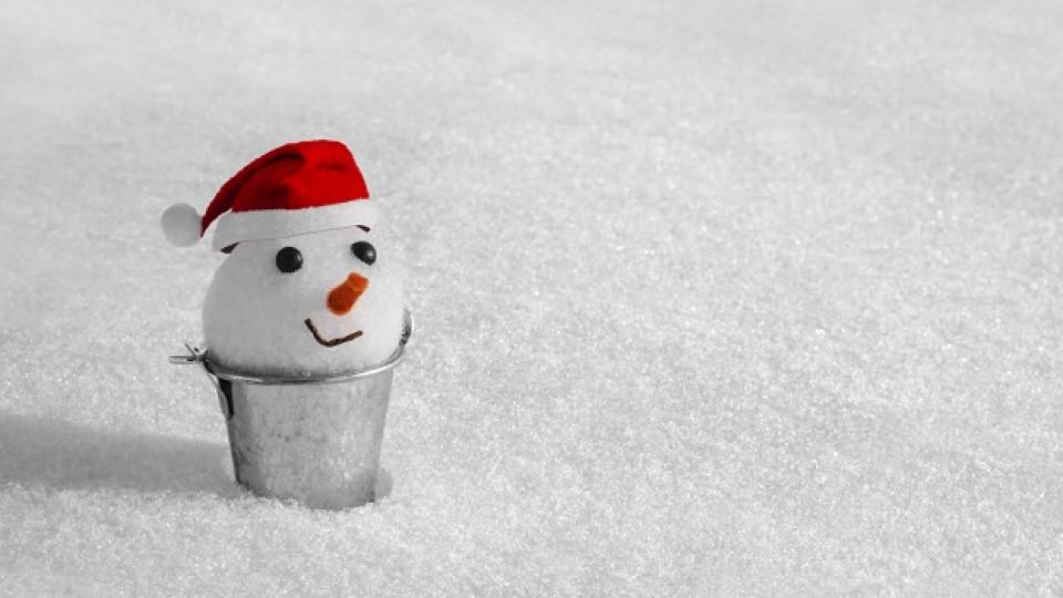 Снежковци вкъщи