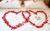 Учени: Сексът помага след прекаран инфаркт