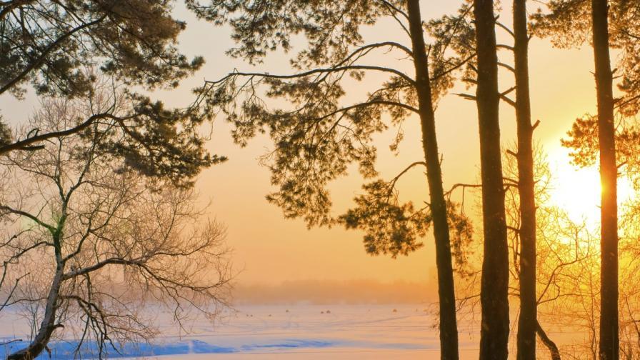 Очаква ни топла Коледа без сняг