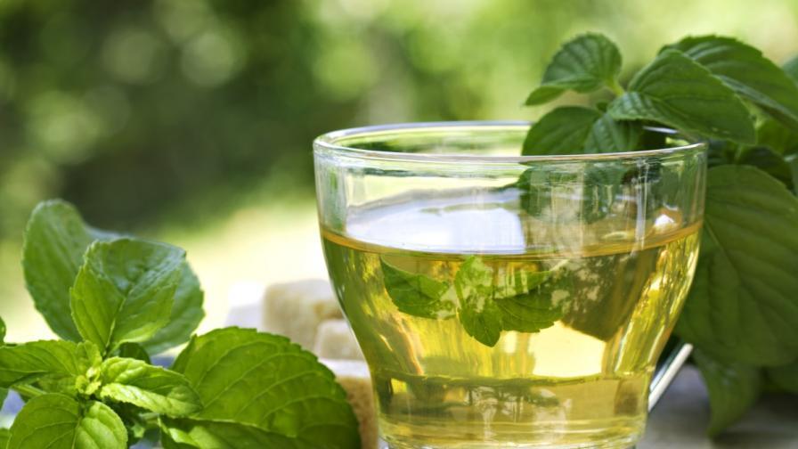 Учени: Зеленият чай наистина помага за отслабване, ако се комбинира с упражнения