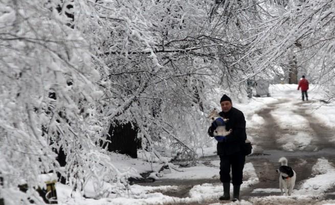 Зима в Борисовата градина в София
