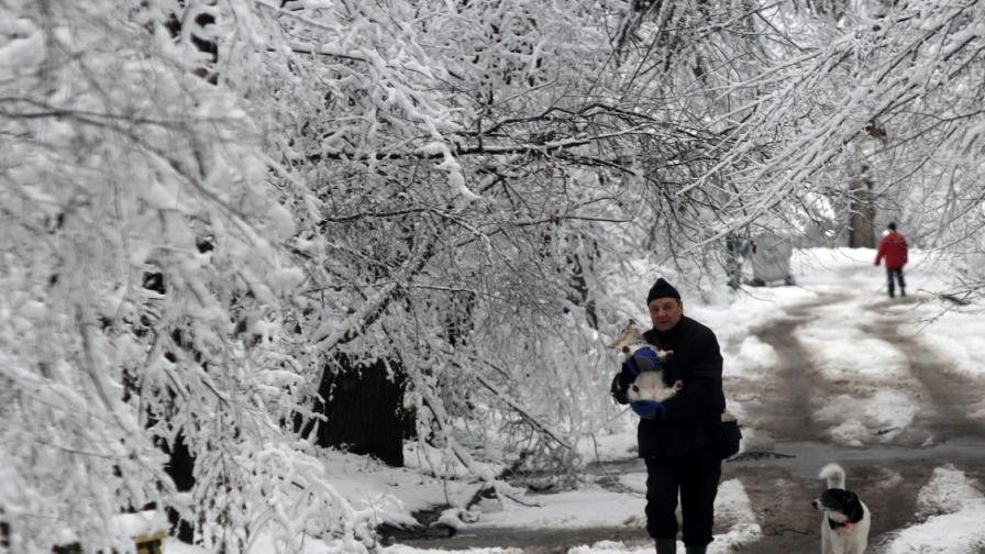 290 санкции в София за непочистени от сняг от площи и тротоари