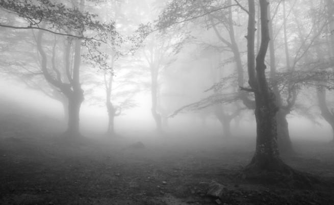 Гъста мъгла в няколко области на Коледа