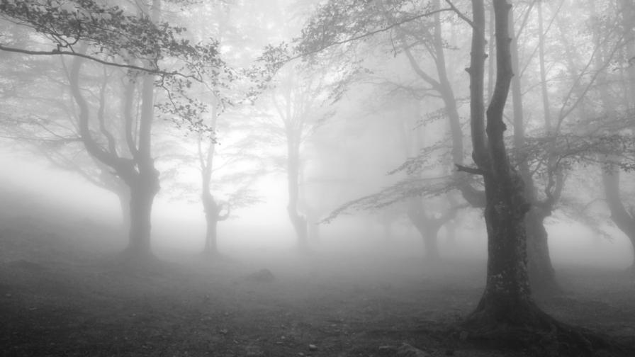 <p>Очакват ни сутрешни мъгли и пролетни температури</p>