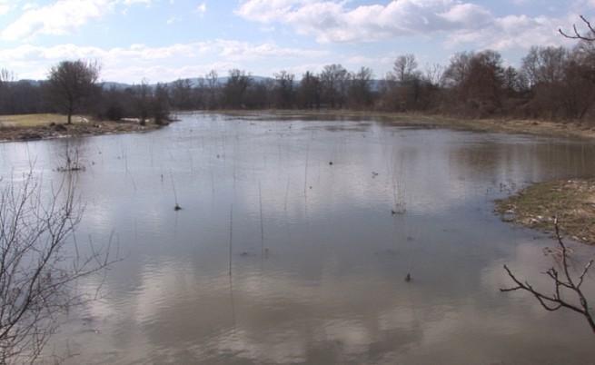 Фермери алармират: Река Тунджа е отровена