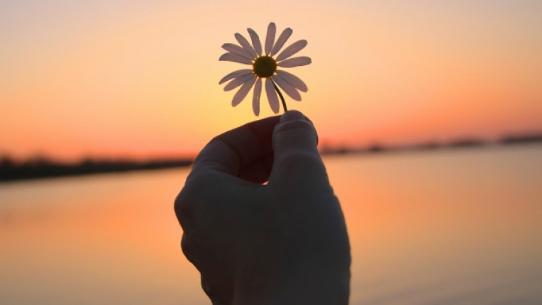 залез тишина красота