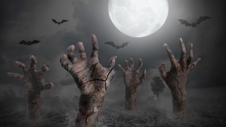 Учени съветват как да оцелеем при масово нашествие на зомбита