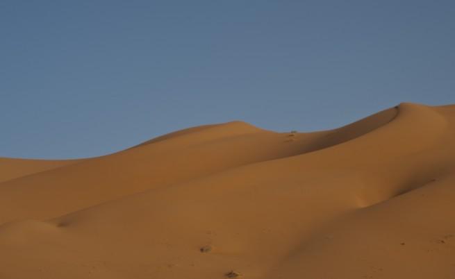 НАСА измери колко прах от Сахара достига до Амазонка