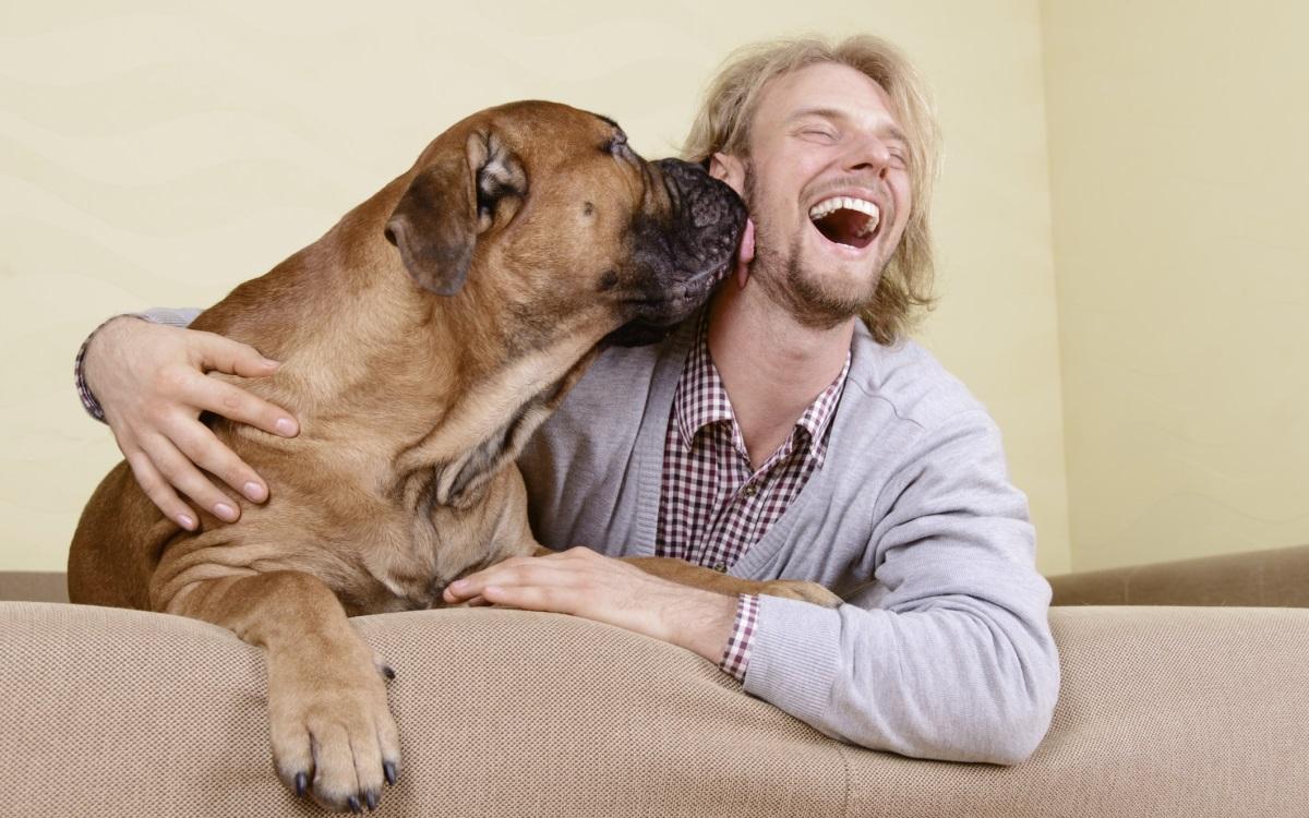 Поиграйте си с домашния любимец<br /> <br /> Прости активности като да прегърнете котката или кучето си, може да подобри настроението ви. Доказано е, че да се порадвате на кучето си за 15 минути освобождава хормоните на щастието серотонин, пролактин и окситоцин и понижава този на стреса – кортизол.