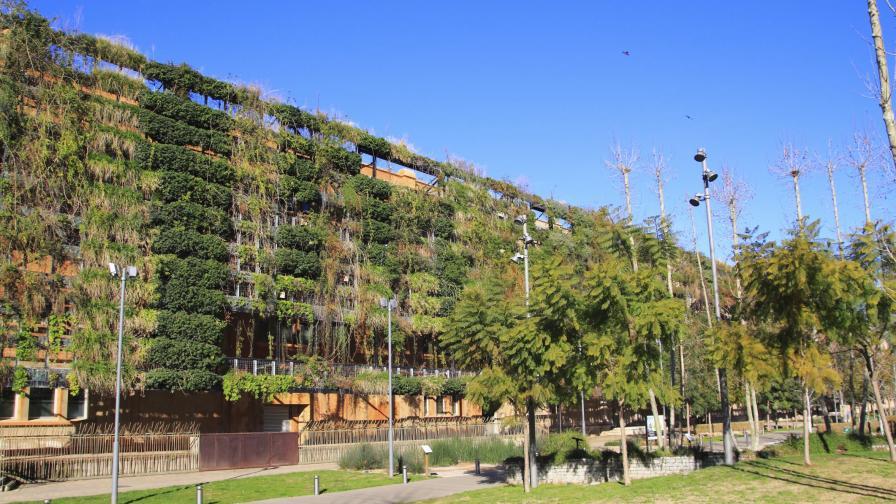 Нови паркове вече само по стените на панелките?