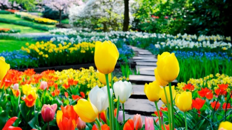 Най-красивите градини в света - I част