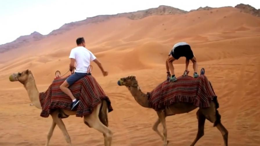 Звезди на Формула 1 в дюните на Дубай (видео)