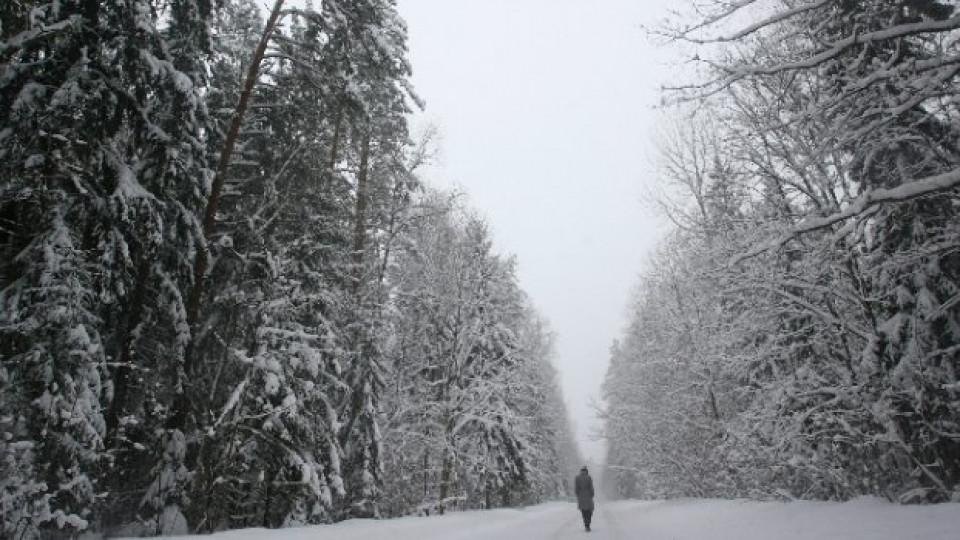 Разходка в снежна приказка