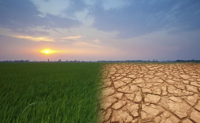 80% процента от хората по света – много загрижени за климата
