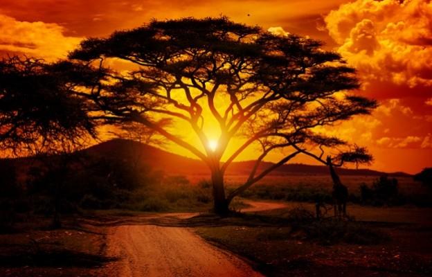 Резултат с изображение за 12 поговорки: Мъдростта на Африка
