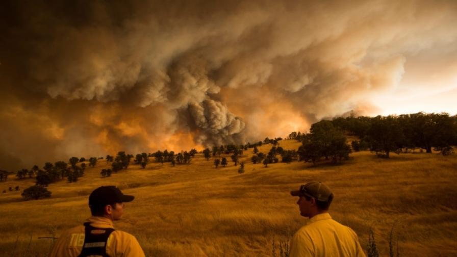 Извънредно положение в Калифорния заради пожари