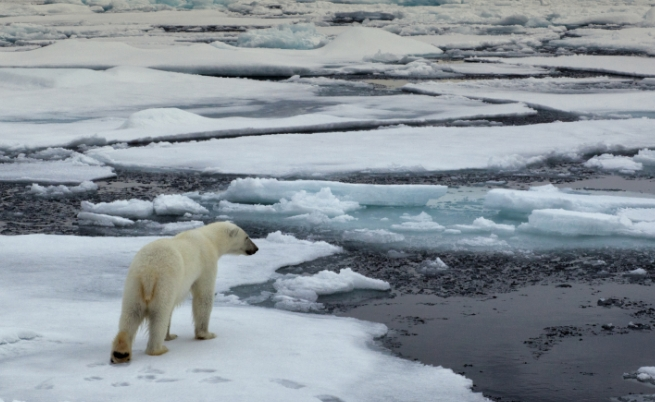 САЩ ще се промени до неузнаваемост заради глобалното затопляне още през този век