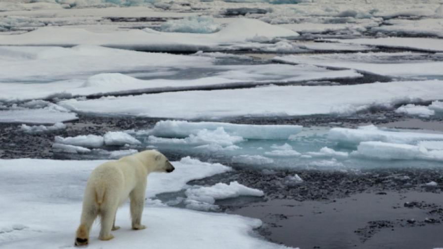 Глобалното затопляне променя САЩ неузнаваемо