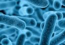 Слабо известна полова инфекция - супер-бактерия