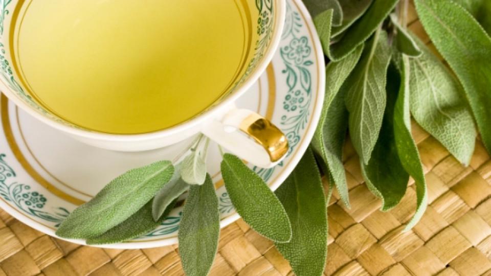 Съкровище от природата – градински чай