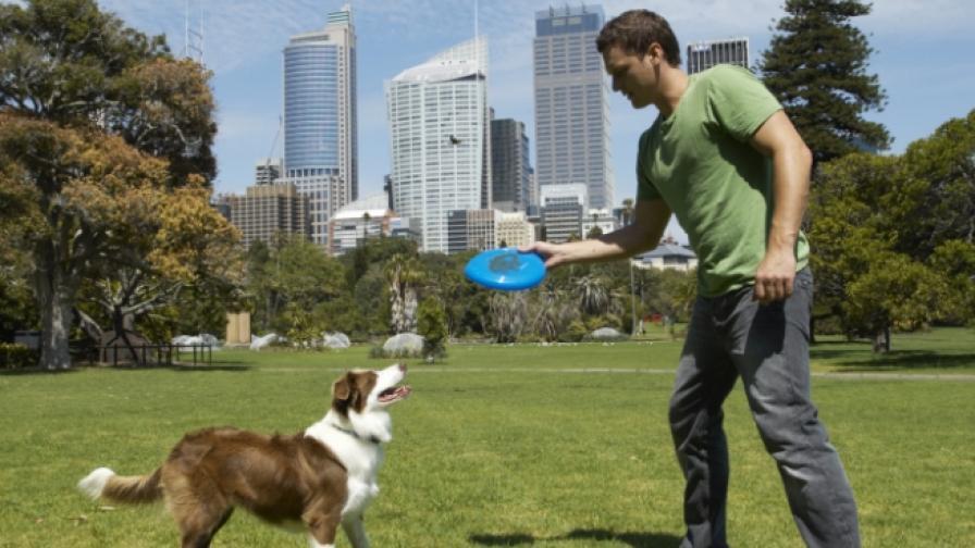 Игра за кучета спечели изложението в Лас Вегас