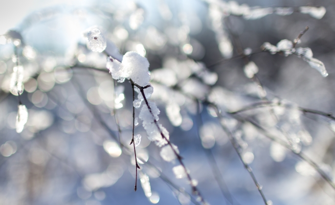Сняг и студ превземат страната (видео)