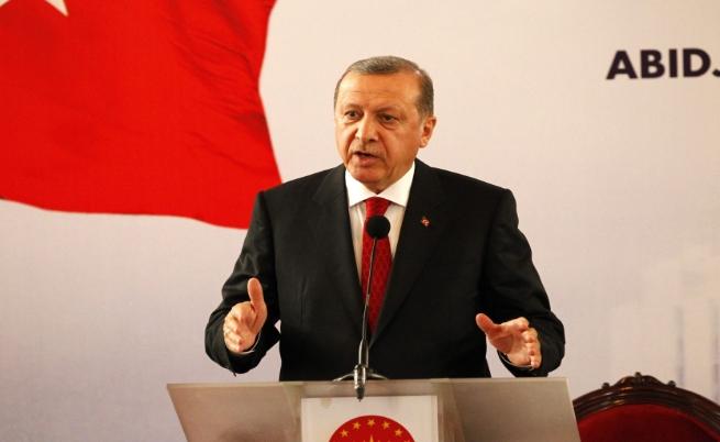 Ердоган за турските пчели и лъвовете вегетарианци