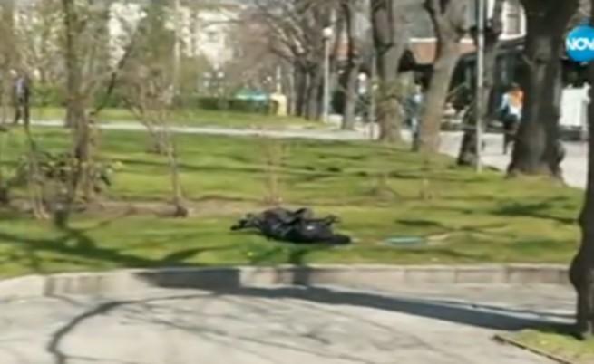 Това е раницата на мъжа, захвърлена в тревните площи срещу служебния вход