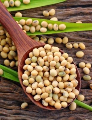 Соя Соята съдържа прогестерон и може да помогне за по-доброто овлажняване.