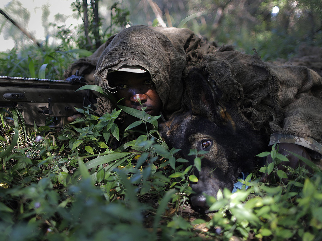 Обучение на кучета за борба с бракониерството в центъра Батъл Крийк близо до Рустенбург, Южна Африка.