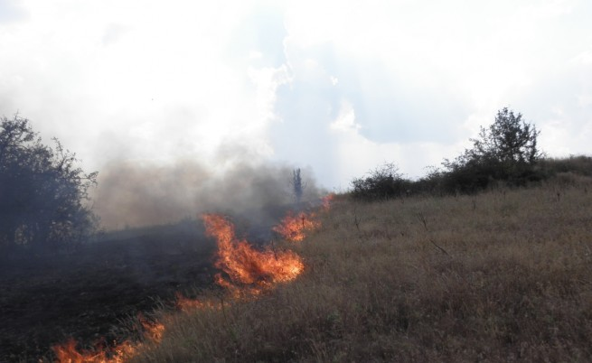 Пожарът в Хасковско заради печене на патладжани