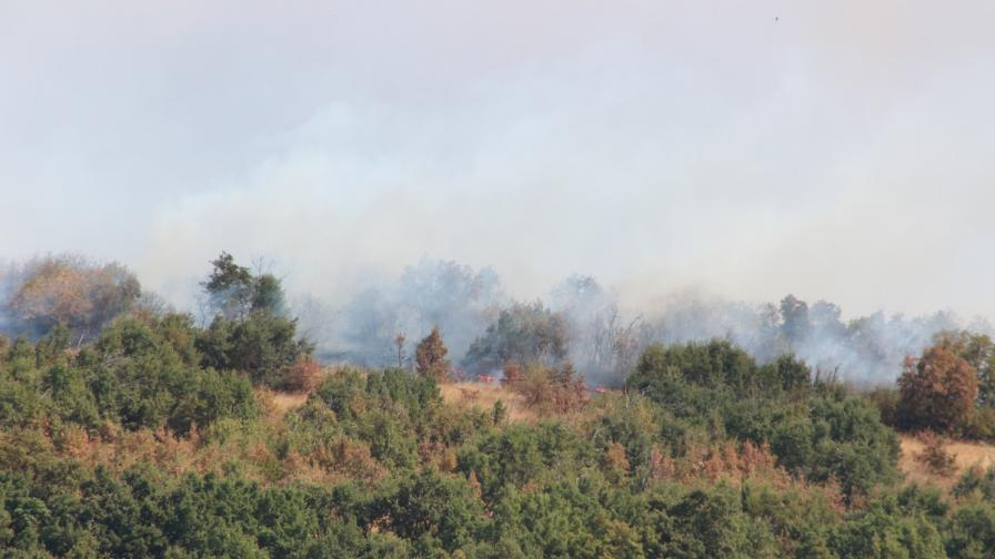 15 пожарни екипа дежурят край Сакар планина