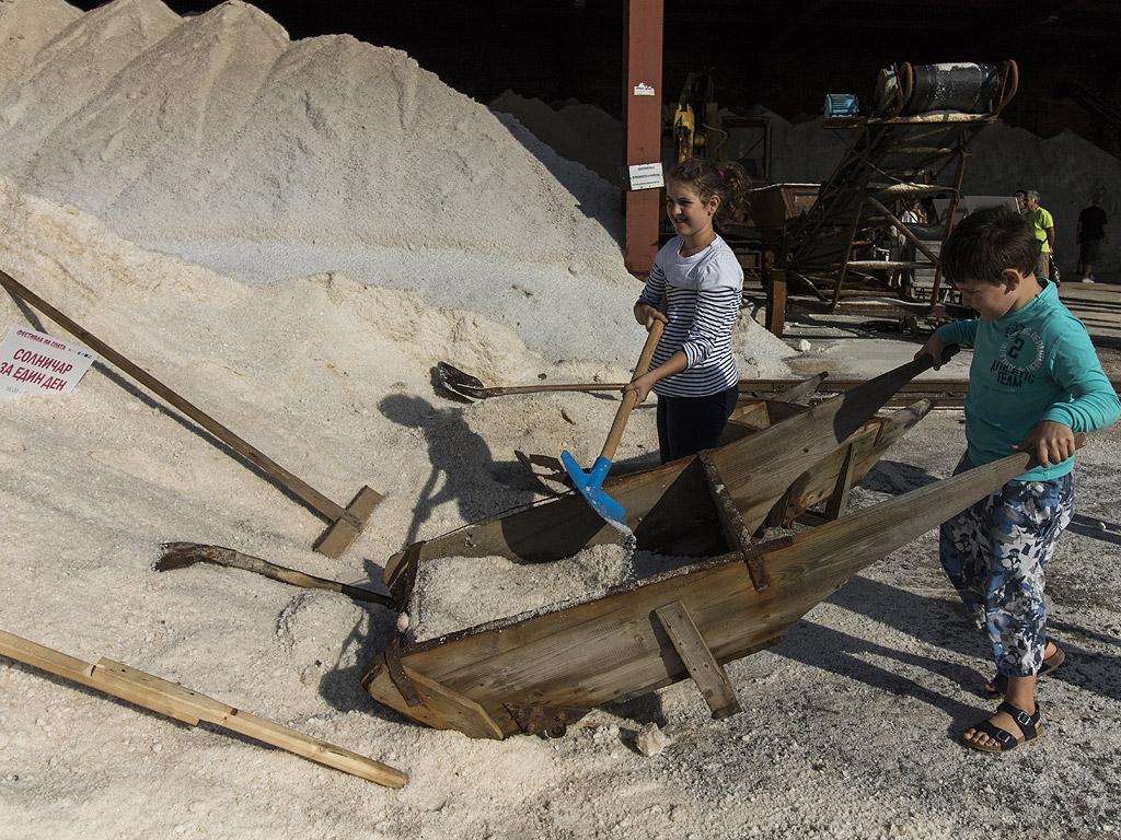 Установено е, че производството на сол е правопропорционално на среднозимната численост на водолюбивите птици в езерото и при добро поддържане на екологичните условия в резервата, се увеличава и производството на сол.