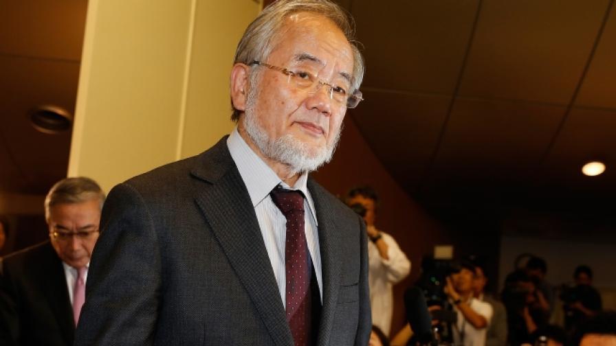 Йошинори Осуми