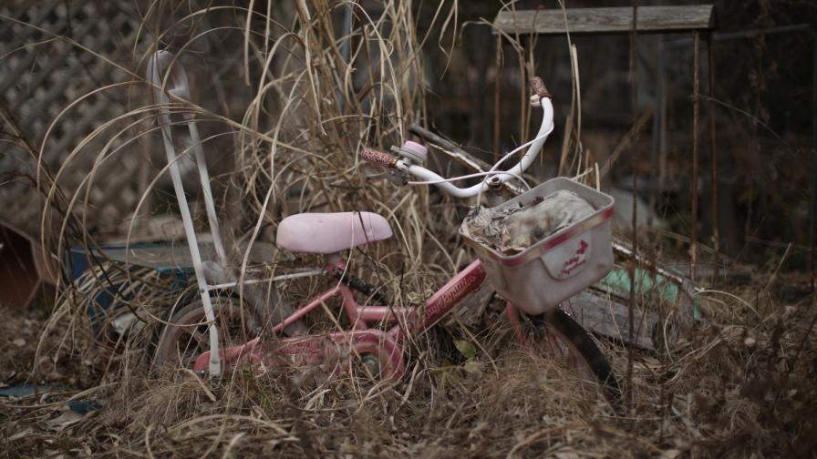 Пет години след трагедията – Фукушима днес (снимки)